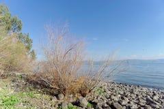 Ansicht der Ufer des Meeres von Galiläa nahe dem Capernaum Lizenzfreies Stockbild