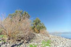 Ansicht der Ufer des Meeres von Galiläa nahe dem Capernaum Lizenzfreie Stockfotografie