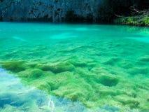 Ansicht der Unterseite umfasst mit Moos und Algen durch das klare Wasser von einem sehr sauberen See lizenzfreie stockfotografie
