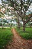 Ansicht der Wegweise in Chiang Rai stockfotografie