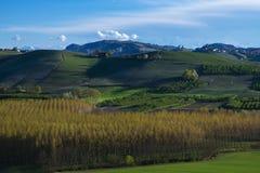 Ansicht der Weinberge und der Wolken im Langhe Piemont stockfoto