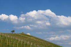 Ansicht der Weinberge und der Wolken im Langhe Piemont lizenzfreie stockfotos