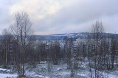 Ansicht der Winterbäume, -hauses und -berges stockbilder