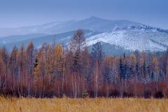Ansicht der Winterberge vom höchsten tschechischen Berg - Snezka Lizenzfreie Stockfotos