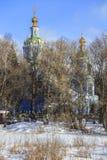 Ansicht der Winterwaldung, die alten Friedhof und alte Kirche versteckt Dmitrov Kremlin Lizenzfreie Stockfotos