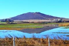 Ansicht des überschwemmten Landes Stockbild