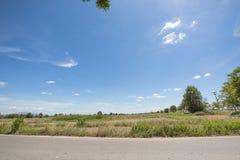Ansicht des Ackerbaureisfeldes und der Straße mit Hintergrund- und Nachmittagssonnenlicht des blauen Himmels an der Spottschrift  Lizenzfreies Stockfoto
