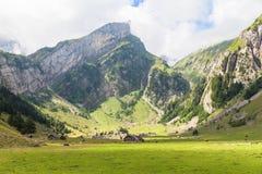 Ansicht des Alpstein-Gebirgsmassivs Stockbilder