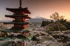 Ansicht des Berges Fuji und der Chureito-Pagode mit Kirschblüte im Frühjahr, Fujiyoshida, Japan Stockbilder