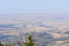 Ansicht des Big Horn-Beckens lizenzfreies stockbild