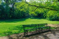 Ansicht des Central Park in New York City im Frühjahr lizenzfreie stockfotos