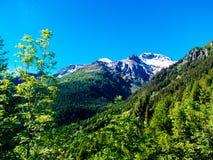 Ansicht des Cistella-Berges, der zum Alpe-devero, summe steigt Stockbild