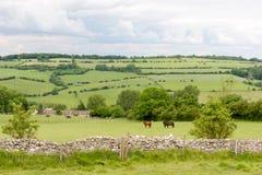 Ansicht des Cotswolds von Cleeve-Hügel nahe Cheltenham Stockbild