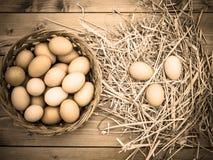 Ansicht des desaturated Sepiaeffektes, Korb von frischen Hühnereien, gerade genommen vom Hühnerstall auf ein hölzernes Brett mit  lizenzfreies stockfoto