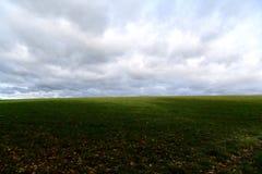 Ansicht des endlosen Himmels und des Grases lizenzfreies stockbild
