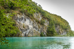 Ansicht des enormen steinigen strukturierten Felsens bedeckt mit Bäumen und Büschen n Lizenzfreie Stockfotografie