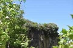 Ansicht des felsiger Gebirgsteils und -vegetation Lizenzfreies Stockfoto