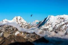 Ansicht des Fliegens der Gebirgslandschafts-hohen Spitzen und Eagles Lizenzfreies Stockfoto