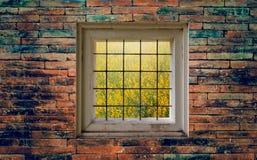 Ansicht des Gartens durch Fenster auf Backsteinmauer Stockfotografie