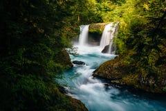 Ansicht des Geistes fällt auf kleinen weißen Salmon River im Col. Stockfoto