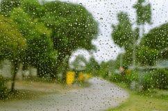 Ansicht des grünen Baumhintergrundes und -straße im Vorderhaus am regnerischen Tag Lizenzfreie Stockbilder