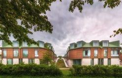 Ansicht des grünen Rasens mit Hecke und überhängenden Baumasten b Lizenzfreies Stockbild