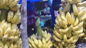 Ansicht des Hängens von saftigen Bananen am lokalen Markt in Sri Lanka stock video