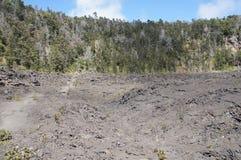 Ansicht des Kilauea iki Kraterbodens stockfoto