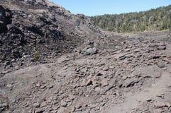 Ansicht des Kilauea iki Kraterbodens lizenzfreies stockfoto