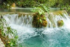 Ansicht des kleinen Flusswasserfalls mit nassem Busch in der Mitte Stockbild