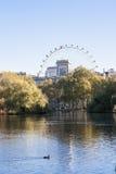 Ansicht des London-Auges von Hyde Park Stockfotografie