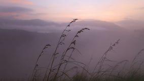 Ansicht des nebeligen Sonnenaufgangs auf der kleinen des Adams Spitze in Ella Ella ist eine schöne kleine schläfrige Stadt auf de stock video footage