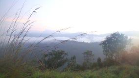 Ansicht des nebeligen Sonnenaufgangs auf der kleinen des Adams Spitze in Ella, Sri Lanka stock footage