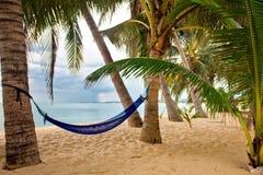 Ansicht des netten tropischen leeren Sandstrandes Stockfoto