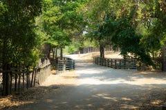 Ansicht des Parks lizenzfreies stockbild