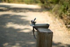 Ansicht des Parks lizenzfreie stockfotografie