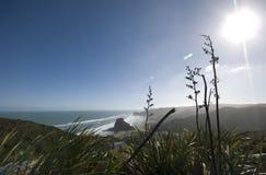 Ansicht des Piha Strandes Lizenzfreies Stockbild