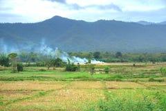 Ansicht des Reisbauernhofes und der lokalen Leute des Rauches im Berg Lizenzfreie Stockbilder