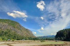 Ansicht des Reisbauernhofes und des bewölkten blauen Himmels durch lokale Leute im mou Lizenzfreie Stockfotografie