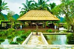 Ansicht des romantischen traditionellen Erholungsortes mit Teichen mitten in grünem Reisterrassenfeld und hohen KokosnussPalmen lizenzfreie stockbilder