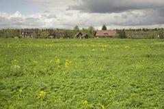 Ansicht des russischen Dorfs Grüne Wiese Lizenzfreies Stockbild
