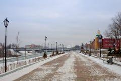 Ansicht des schneebedeckten Dammes Lizenzfreies Stockbild