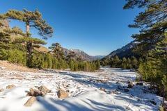Ansicht des Schnees u. der Berge bei Haut Asco in Korsika Stockbild