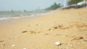Ansicht des st?dtischen asiatischen Strandes, Damm 4K Unsch?rfe, Hintergrund stock footage