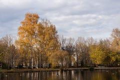 Ansicht des Stadtparks mit gelben Bäumen und des Teichs mit Enten auf bewölktem Herbstmorgen Stockbilder