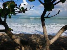 Ansicht des Strandes Lizenzfreie Stockfotografie
