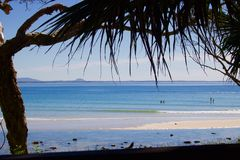 Ansicht des Strandes bei Noosa mit überhängenden Palmwedeln lizenzfreie stockfotografie