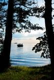 Ansicht des Strandes durch die Bäume Stockfotografie
