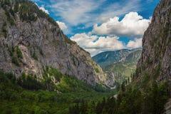 Ansicht des Tales Hoellental Stockbild