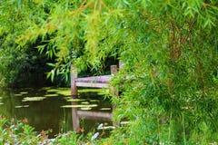 Ansicht des Teichs Stockbilder